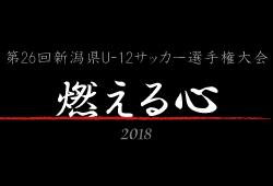 2018年度 スポーツデポカップ 第26回新潟県U-12サッカー選手権大会〝燃える心〟【優勝は水原SS!】