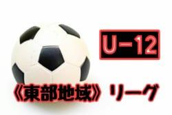 2018年度 第43回 岡山県 東部少年サッカーリーグ(高学年)結果更新中!入力お待ちしています!