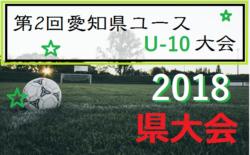 2018年度 第2回 AIFA 愛知県ユースU-10大会 愛知県大会 【5地区代表決定】7/1開催!