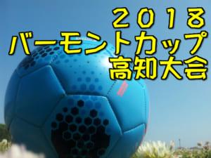 2018年度 バーモントカップ第28回全日本少年フットサル大会 高知県大会 6/23開催!