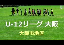 2018年度 U-12リーグ 第42回全日本少年サッカー大会 大阪市地区 6/17結果更新!6/16,6/17