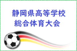 2018年度 【インハイ】第66回静岡県高等学校総合体育大会サッカー競技 優勝は藤枝東!