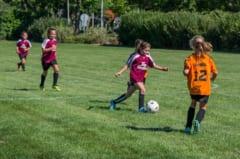 2018年度 第37回奈良県女子小学生サッカー選手権 6/17開催!組合せ情報お待ちしています!