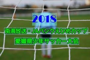 2018年度 第42回南海放送杯・JAバンクえひめカップ愛媛県少年サッカー大会 7/7.14開催!組合せ掲載!