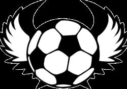 2018年度 ケーブルテレビ杯 第32回千葉県少年サッカー選手権大会3年生大会 7ブロック予選(千葉市3年生大会)優勝はバディーSCサックス!