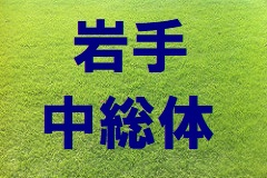 2018年度【岩手県】紫波郡新人体育大会サッカー競技結果掲載!優勝は紫波第一中学校!