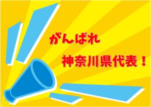 がんばれ神奈川県代表!FCパーシモンを応援しよう!2018年度JFAバーモントカップ全日本U-12フットサル選手権大会