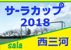 2018年度  サーラカップ 西三河代表決定戦   9/1,2開催!情報お待ちしています