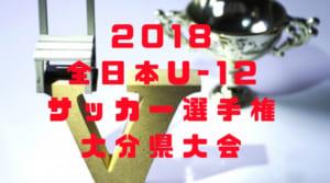 2018年度 JFA 第42回全日本U-12サッカー選手権 大分県大会 11/3開催!